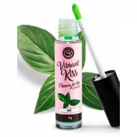 Lesk na rty SECRET PLAY VIBRANT KISS MINT